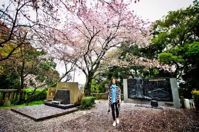 In ultima zi in Kyoto, au inceput sa se scuture ciresii. In tot orasul strazile erau acoperite de petale rozalii, parea ca ninge pur si simplu!