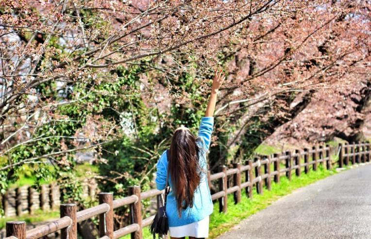 Sakura Kawagoe
