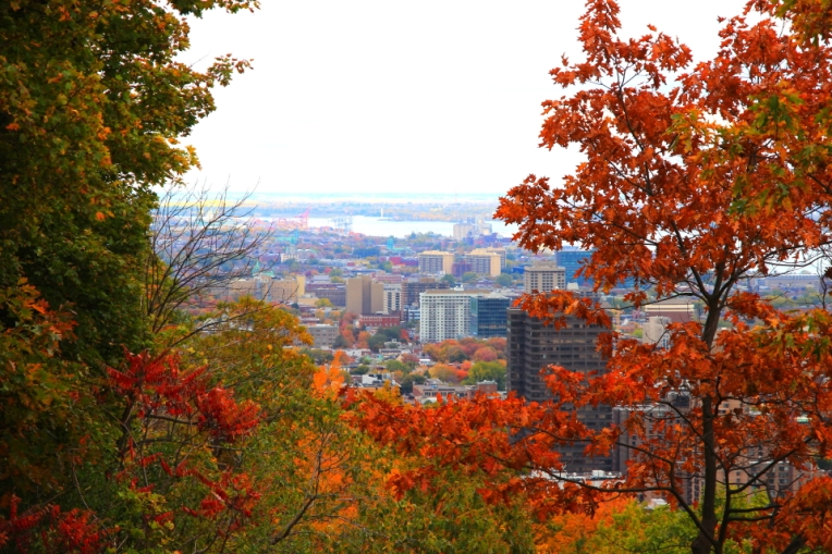 Montreal, priveliste de pe MontRoyal