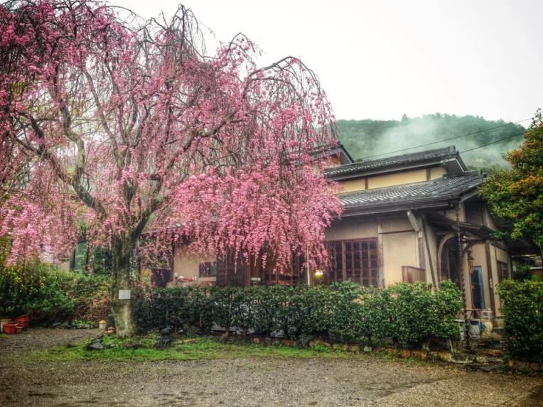 Casa traditionala in Arashiyama