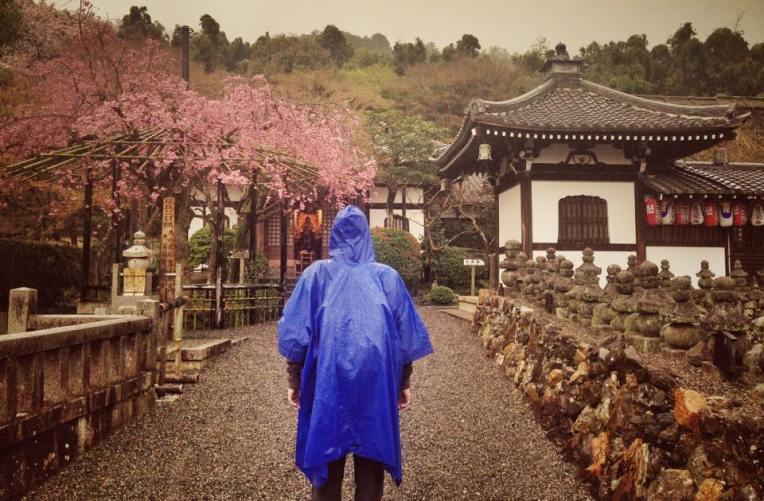 Ploaie, ploaie si iar ploaie