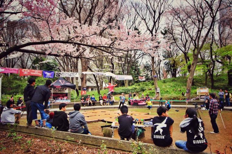 Duminica parcurile sunt pline de oameni iesiti la hanami (picnic pentru a privi ciresii infloriti)