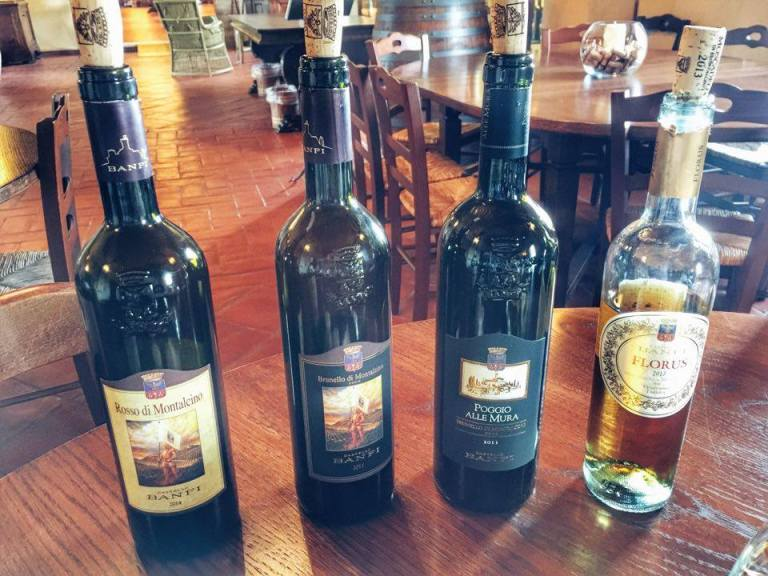 Wine Tasting Castello Banfi 6