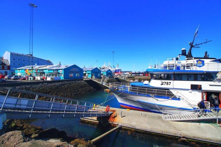 Reykjavik Old Port 2