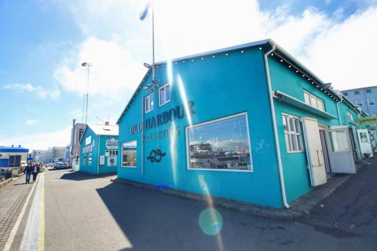 Reykjavik Old Port 5
