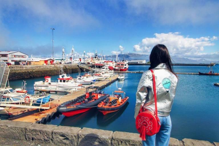 Reykjavik Old Port