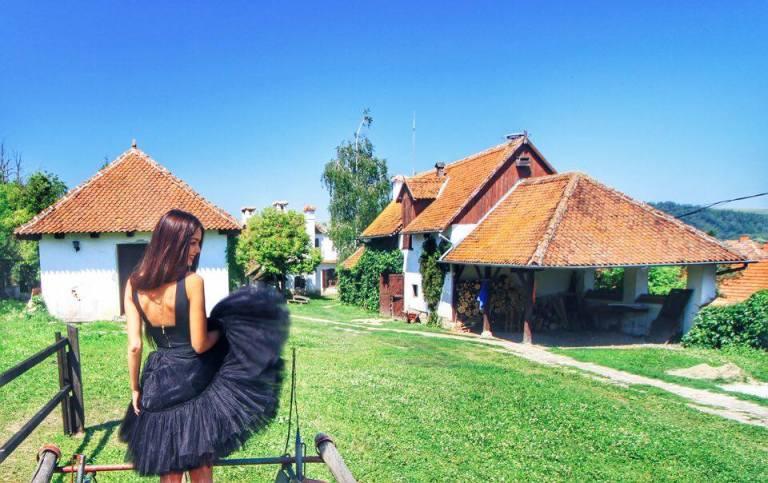 2Count Kalnoky Guesthouse Miclosoara Romania 21