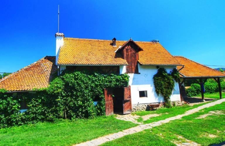 Count Kalnoky Guesthouse Miclosoara Romania 23