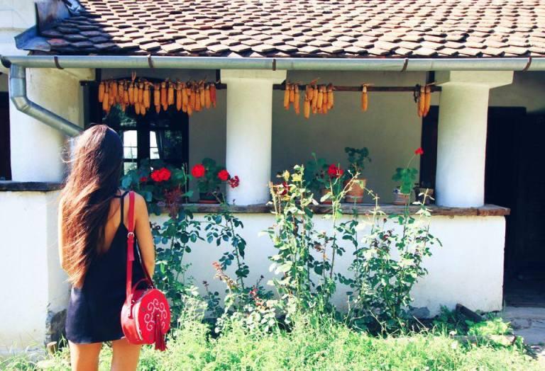 Count Kalnoky Guesthouse Miclosoara Romania 9