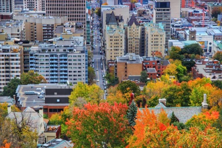 montreal_leaf-peeping_3