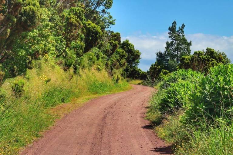 tronquiera-dirt-road-sao-miguel-azores-4