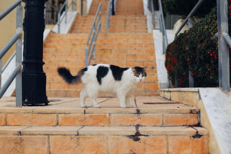 kastella_piraeus_1