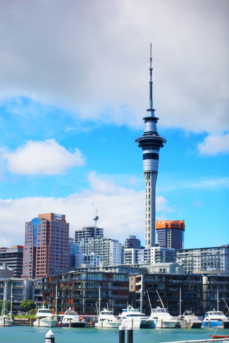 Auckland_Wynyard District_6