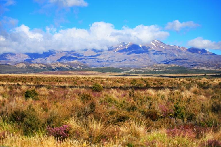 Roadtrip Turangi-Tongariro-Ruapehu_8