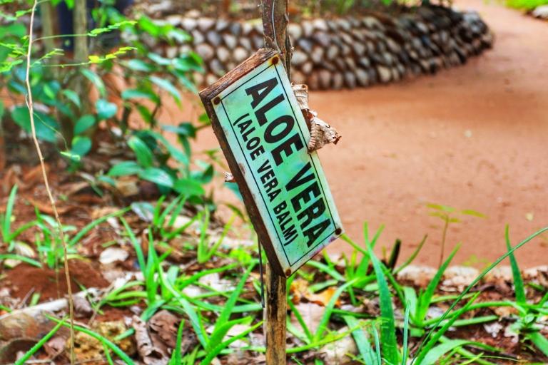 Spice Garden Sri Lanka_3