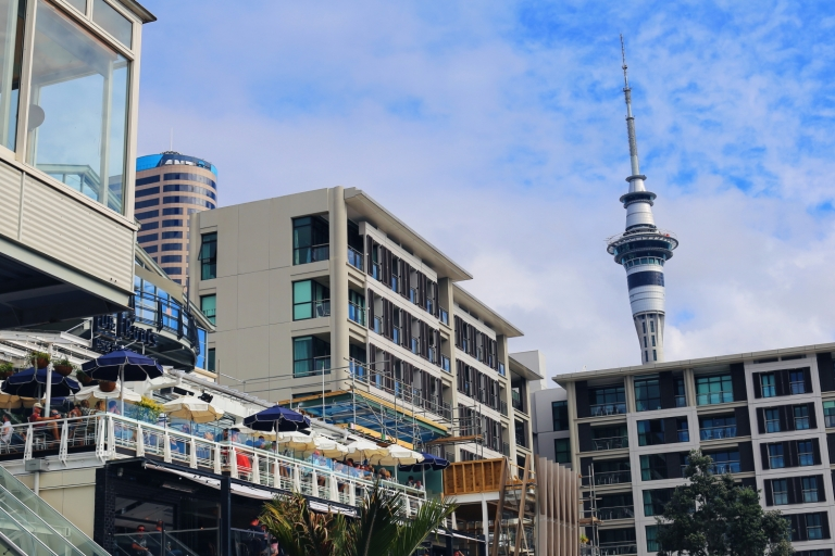 Viaduct Harbour_Auckland_9