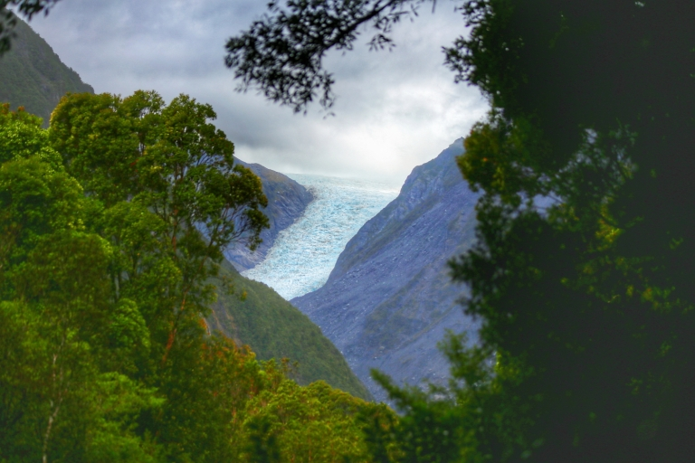Fox Glacier New Zealand_1