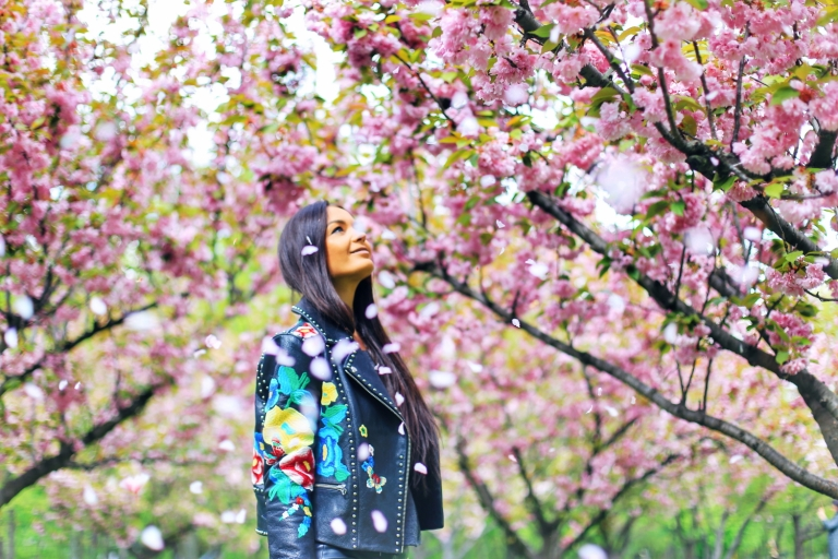 Sakura in Bucuresti_1