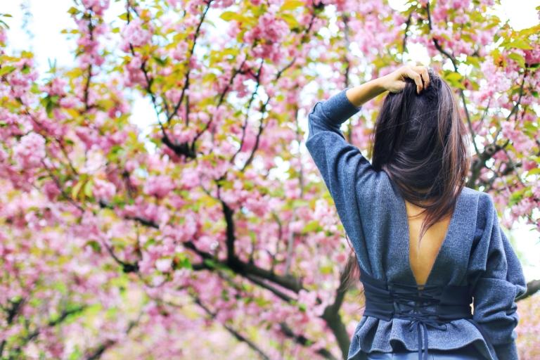 Sakura in Bucuresti_4