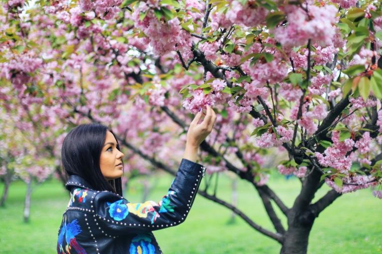 Sakura in Bucuresti_6