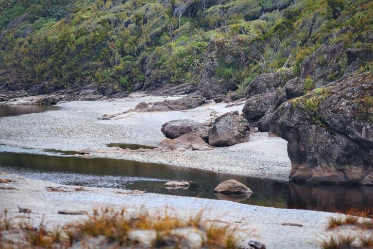 Ship Creek_New Zealand_7 (2)