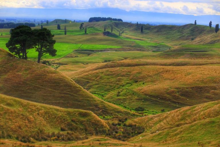Hobbiton_New Zealand_17