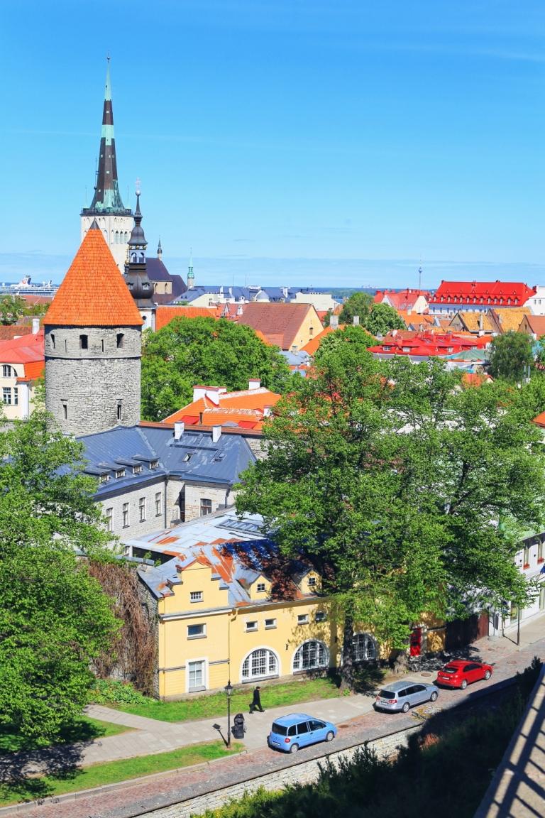 Toompea Hill_Tallinn View_6