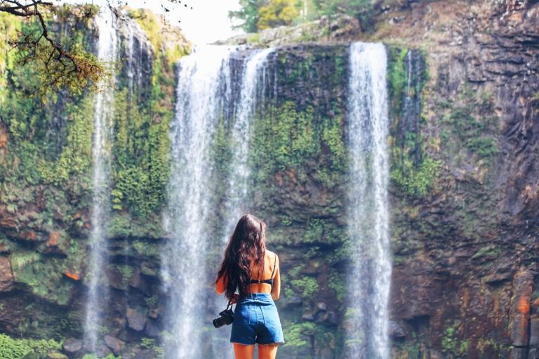 Whangarei Falls_New Zealand_1