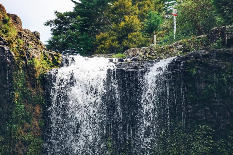 Whangarei Falls_New Zealand_2