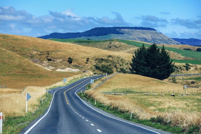 Road Trip New Zealand_5