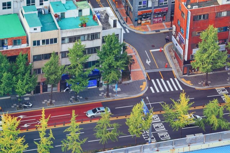 South Korean Cars_All White Black Grey or Silver_3