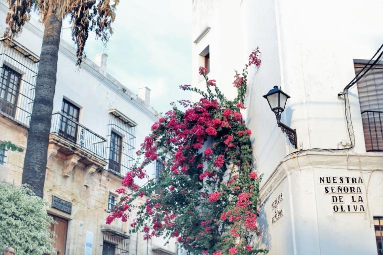 Andalucia_86