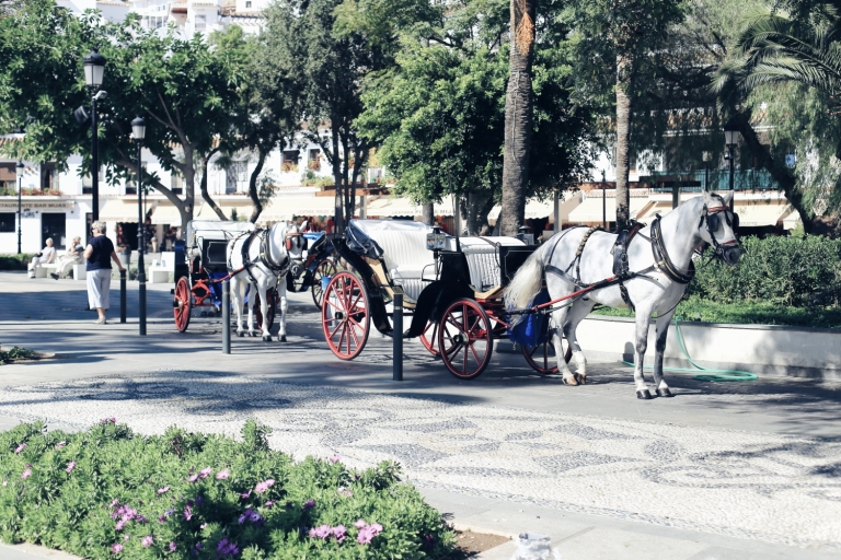 Mijas_Andalucia_Spain_8