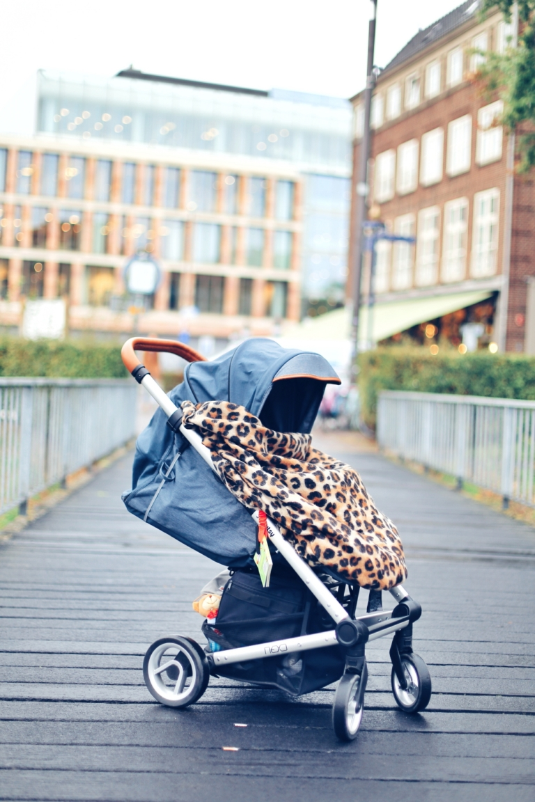 Baby Travel_The Netherlands_16