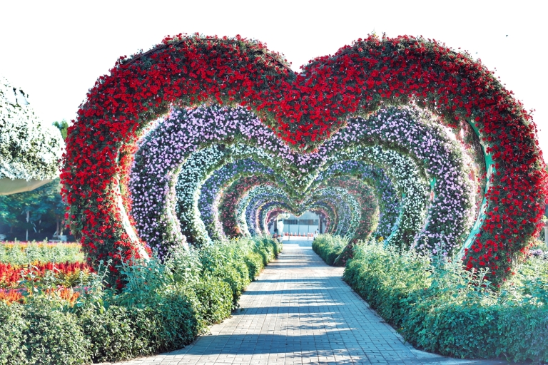 miracle garden_dubai_1
